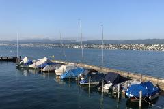 Hafen-Zollikon