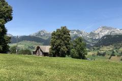 Ferienhaus «Höchi» in Wildhaus, 2019