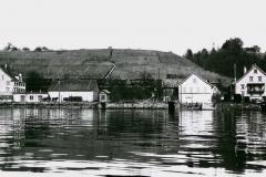 Goldene Halde um 1905