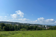 Blick auf den Zollikerberg