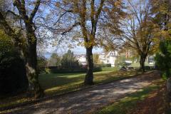 Park Villa Meier-Severini