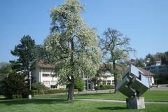 «Vier konkave und vier konvexe Raumecken»,  Schulanlage Oescher. Seit Sommer 1972