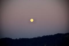 Mond-über-dem-Albis1