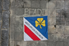 Fahne  Maitlipfadi Zollikon