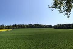 Rüterwis im Mai 2019